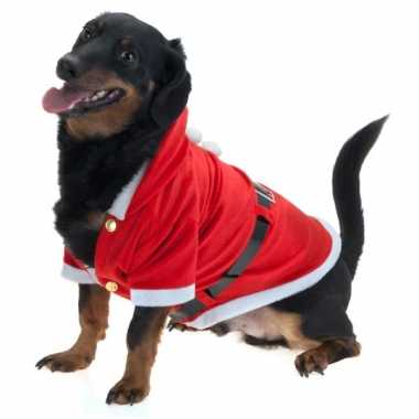 Kerst verkleedkleding voor honden