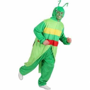 Sprinkhaan verkleedkleding voor volwassenen