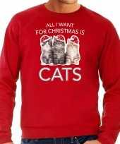 Kitten kerst sweater verkleedkleding all i want for christmas is cats rood voor heren